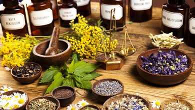 Photo of Difference Between Allopathic and Holistic Medicine
