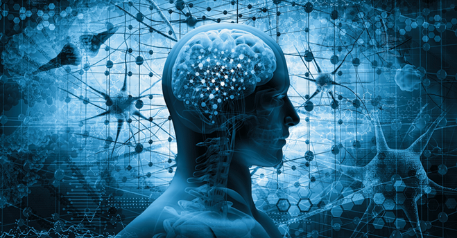 physiological and cognitive benefits
